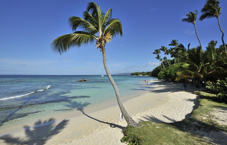 One of the world's most beautiful, the resort's beach, with white sand, and crystal clear turquoise water. #CayoLevantado #Samana #DominicanRepublic   More info:http://www.bahia-principe.com/en/hotels/samana/resort-cayo-levantado