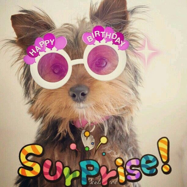 120 Best Images About Birthday Wishes On Pinterest