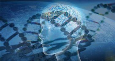 Germán Gyógytudomány - Mi az a GNM?