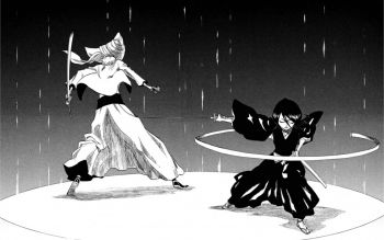Bleach/Rukia Kuchiki HD | Fondo de Escritorio ID:564514