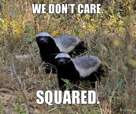 honey badger don't care.