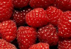 Fruit Dessert - desktop achtergronden, #4297