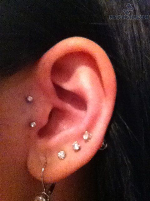 ear piercing essay An ear piercing instrument is a device designed to pierce earlobes by driving a  pointed starter  shannon larratt, editor and publisher of bme and a vocal critic  of the piercing gun, penned an essay titled piercing guns are blasphemy, where .
