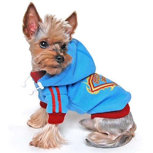 """Élénk kék színű, kapucnis, polár """"Superdog"""" mintás kutyapulóver. Kapucnija állítható méretű, nyakán, ujjai és a pulóver végén bordó szegély, a lábán két piros csík fut végig. Mert a te kutyáidnak is vannak természetfeletti képességei! Igaz?"""
