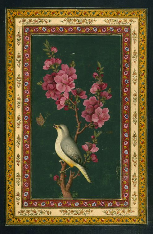 """""""A flowering branch with a bird and a butterfly"""" - Illuminated Manuscript, Album of Persian and Indian calligraphy, 19th century"""