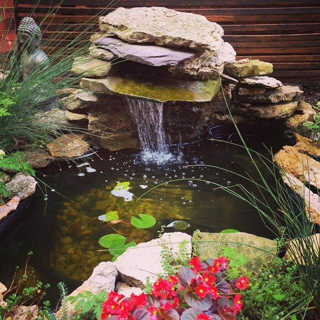 Small Garden Ponds With Waterfalls: 2555 Best Images About Ponds On Pinterest