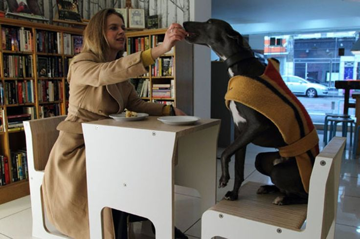 #table #chairs #cute #dog #feading #eating #compact #furniture #photography #space #saving
