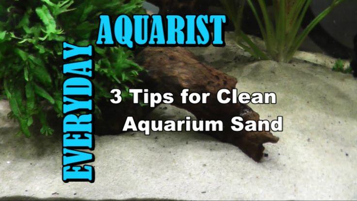 3 Tips for Clean Aquarium Sand - YouTube