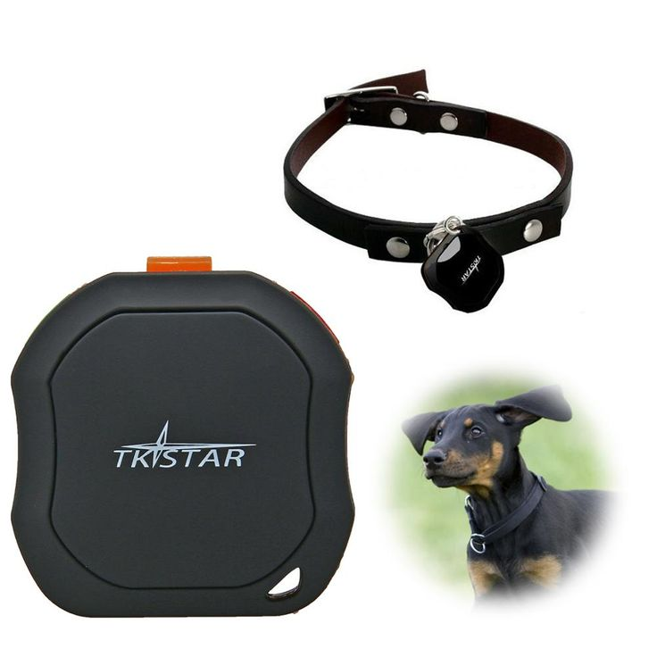 ==> [Free Shipping] Buy Best Hot sale! Professional TKSTAR MiniWaterproof GSM GPRS Tracker Vehicle Real time GPS tracking Device For Car Person Pet PS014-SZ Online with LOWEST Price | 32743346118