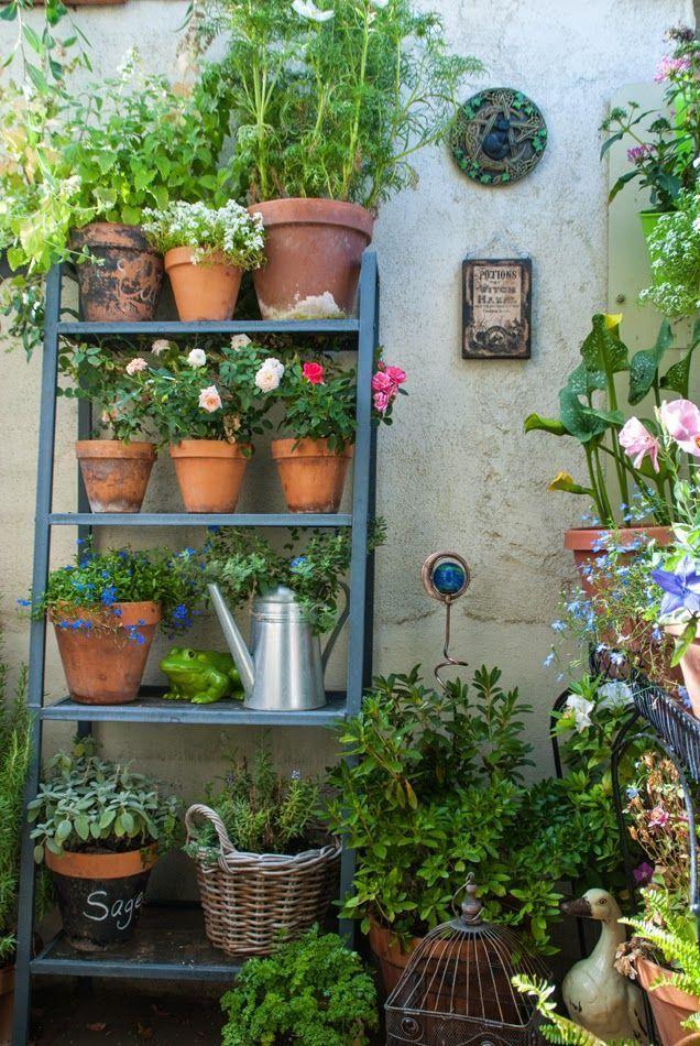 The Magic Garden My Little Container Garden Hello Secret Garden Written The Magic In 2020 Small Garden Design Small Courtyard Gardens Small Space Gardening