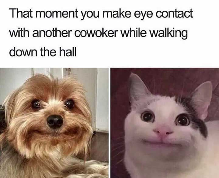 24 Hilarious Relatable Meme That Will Cheer You Up Funny Coworker Memes Catholic Memes Funny Pictures