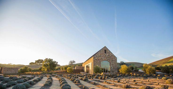 Niner Wine Estates - Story