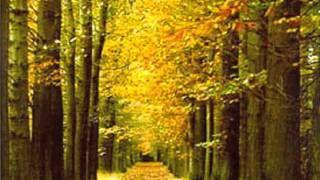 herfst, herfst wat heb je te koop. Liedje