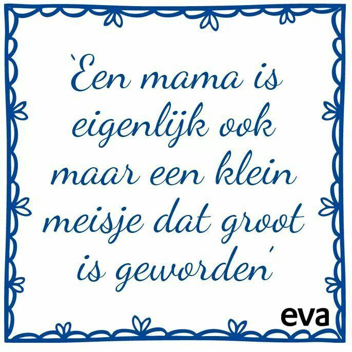 www.schattigebabykleertjes.nl