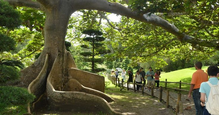 parque-botanico