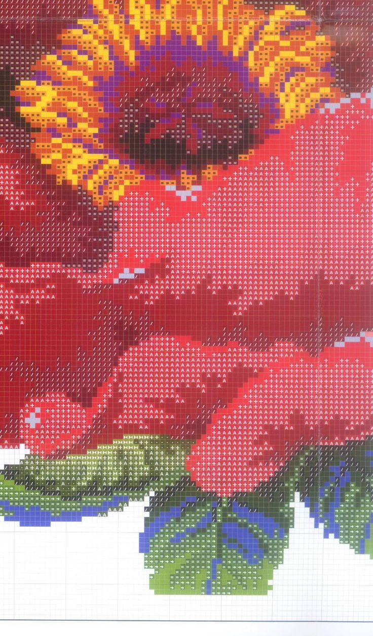large poppy 5/8