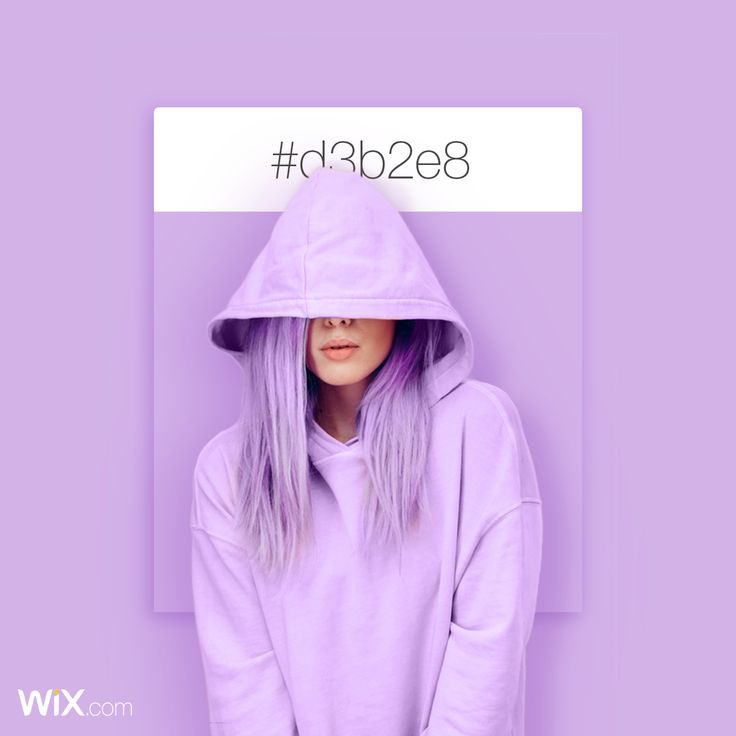 Color Palette Inspiration |Lilac Bloom | # d3b2e8