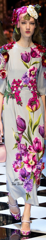 Dolce & Gabbana Fall 2016 RTW  ❇ Téa Tosh