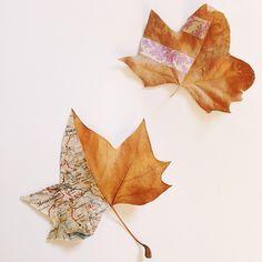 #Washi Wednesday #DIY / Papermash / Katherine Dorrington / autumn leaves