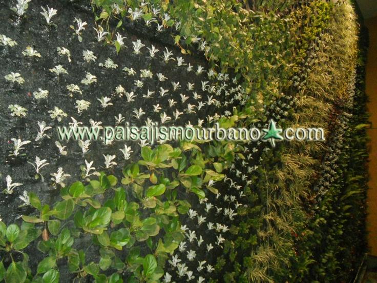 Fachada vegetal en el centro comercial armenia jardin for Jardineros ltda