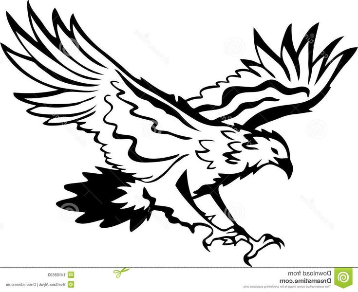 Eagle Clip Art Black and White | Best Free Eagle Flying Clipart Black And White Vector Cdr