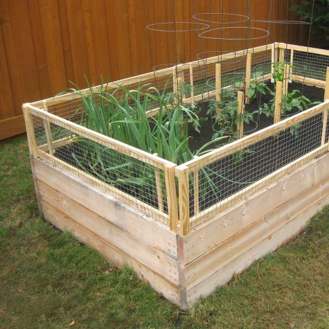 Diy raised bed with removable pest gate do-it-yourself pest gate is removable and can help keep out unwanted guests.