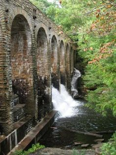 25 Best Norris Tennessee Images On Pinterest Tennessee