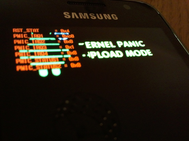 Samsung Galaxy S Android 2.1 kernel panic