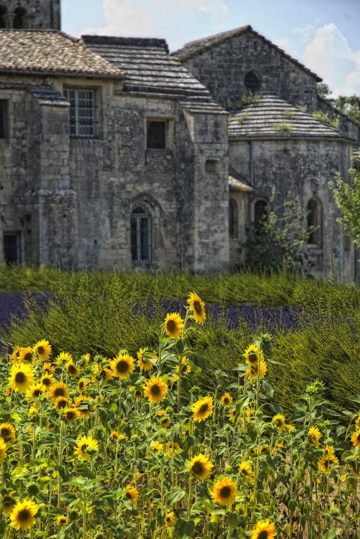 Vincents garden -- Saint-Remy-de Provence, France