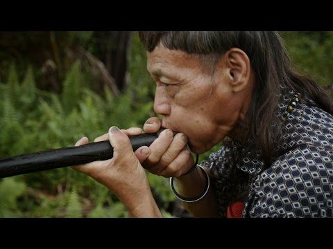 Blowpipe Maker Shares Rare, Ancient Craft - YouTube