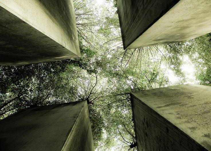 garden of eden beautiful nature photography landscape architecure architectural concrete trees garden of exile jewish museum berlin architec...