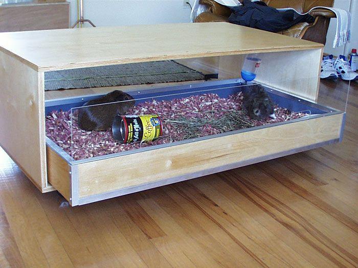 80 best diy furniture images on pinterest furniture legs for Diy guinea pig cage designs