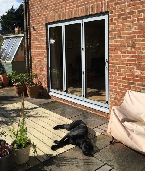 Sunflex SF55c folding sliding (bi-fold) doors. Made from aluminium frames with & 45 best Projects images on Pinterest | Family rooms Olsen and ... pezcame.com
