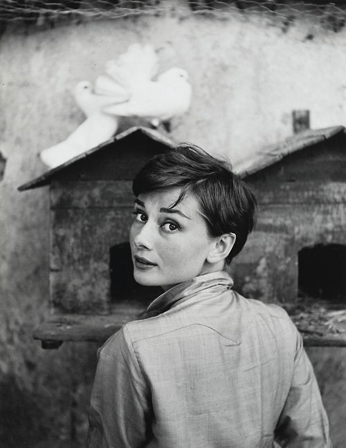 Audrey photographed by Philippe Halsman.