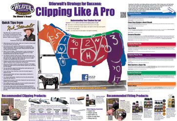 How to get a FREE Clipping like a Pro Poster from Weaver Leather Livestock!