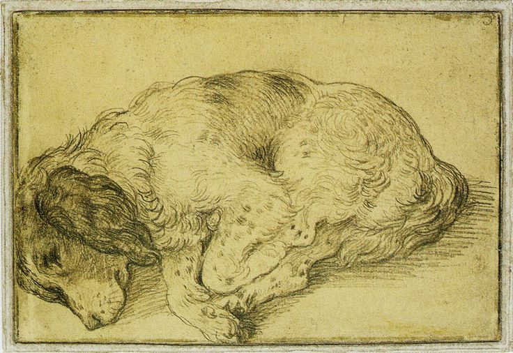 Dog And Doublet Four In A Bed