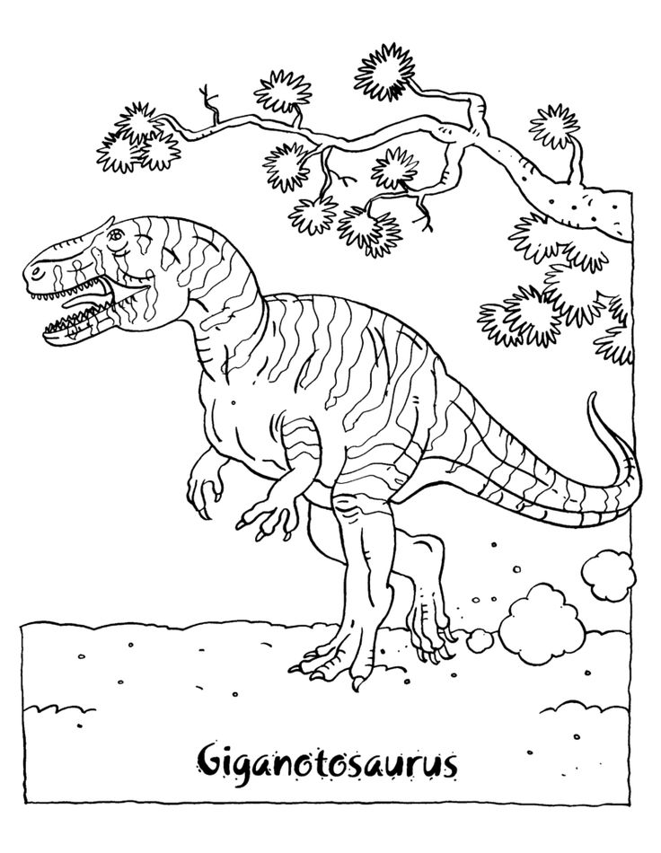 Dinosaur Coloring Pages | Dinosaur coloring pages ...