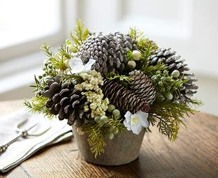 Myrtle, rosemary, narcissus, evergreens and pinecones.