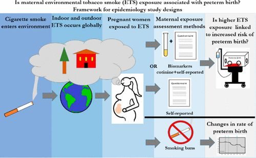 smoking ban research paper