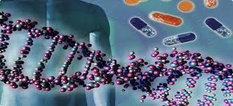 Gen nakliyle zekayı yükseltmek mümkün mü?