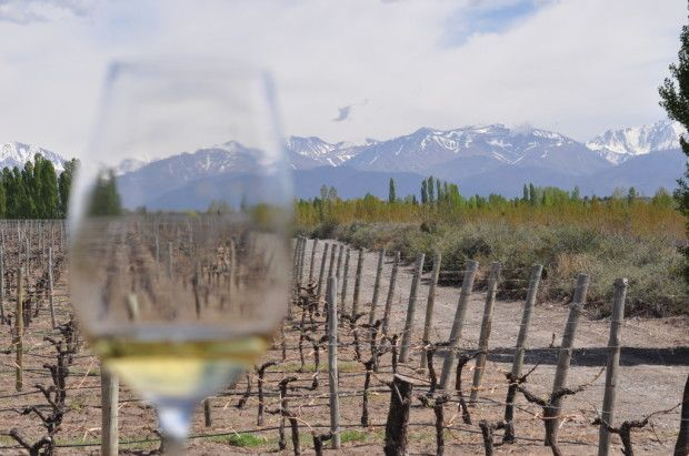 The Andes through White Stones Chardonnay. Great article by http://wakawakawinereviews.com/2013/12/06/luminous-austerity-the-high-altitude-chardonnays-of-catena-zapata/