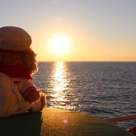【ship219】さんのInstagramをピンしています。 《その先に何を見る。  #船 #ship #海 #sea #朝 #morning #太陽 #sun #船乗り #sailor #機関長 #chiefengineer #igで繋がる世界 #igで繋がる海 #ig_sea #IGersJP #ptk_japan #bns_sky  #gf_skies #一眼レフカメラ #一眼レフ #デジタル一眼レフ #canon #canoneos #canoneos80d #キヤノン #キヤノンeos80d》