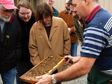 Tours and Seminars - Honeybee Centre