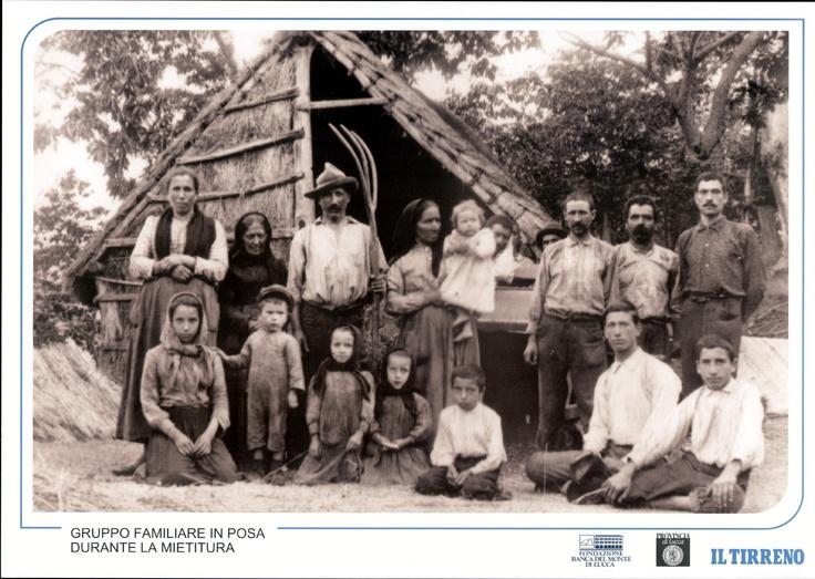 Gruppo familiare in posa durante la mietitura