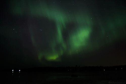 Aurora Vaasa