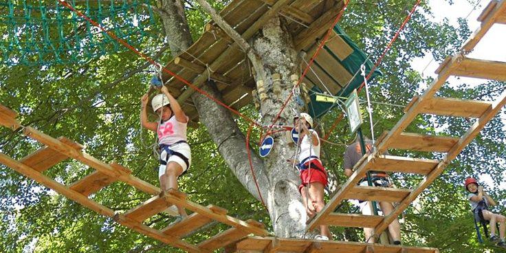 Bienvenue à Jura Monkey Forest ! - Jura Monkey Forest