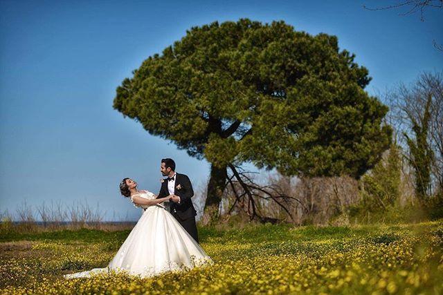 Sıra dışı Özel düğün fotoğrafları ve düğün hikayesi için ilk adres  AS Fotoğrafçılık 04526000044 Whatsapp için 05053559552  http://asfotografcilik.net/  #dugun #dugunfotografcisi #dıscekim #evlilikfotoğrafı #gelin #gelintaci #gelinsaci #bokeh #wedding #weddings #weddingphotography #weddingbokeh #weddingnight #trashthedress #bride #bridetobee #nightphoto #ordu #ordusahil #giresun #ordudugun #ordudüğünfotoğrafçısı #giresundügünfotografcısı #asfotoğrafçılık #alpkontaş #sametişleyen #evedeso…