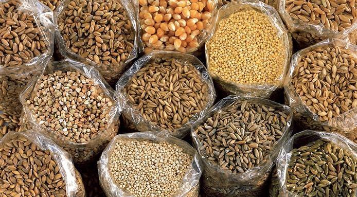 Cucinare farro, quinoa e altri 12 cereali: ecco la guida completa