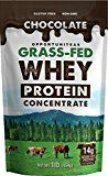 Chocolate Grass Fed Whey Protein Powder Delicious Taste from 4 Natural Ingredients & NO Artificial Junk! Feel Better & Recover Faster With The Best Workout Protein Drink Mix  1 lb Reviews