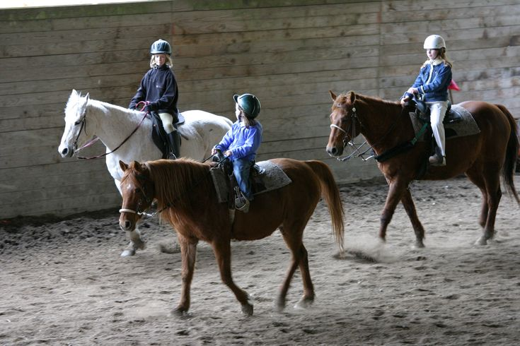 Finding a Great Horse Camp: 8 Tips and 13 Camps in Greater Seattle - ParentMap